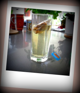 Milford Kühl&Lecker mit Sprudelwasser