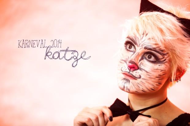 karneval2014-katze1