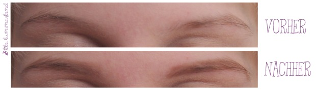 catrice-eye-brow-stylist-020-date-with-ash-ton