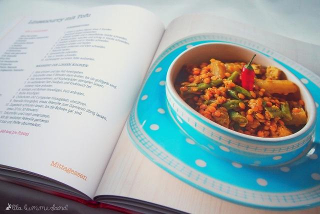 süchtig-nach-süßem-das-kochbuch-ausstieg-zuckersucht-linsen-curry-tofu