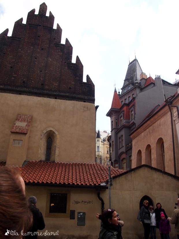 Die Alt-Neu-Synagoge