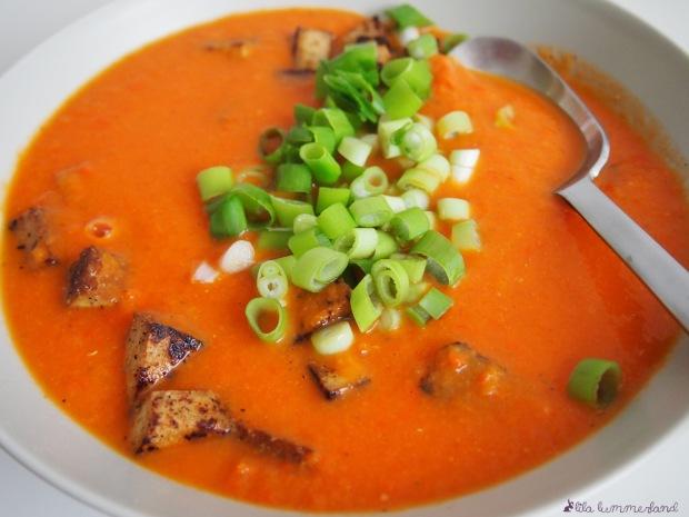 tomaten-paprika-suppe-mit-tofu-lowcarb