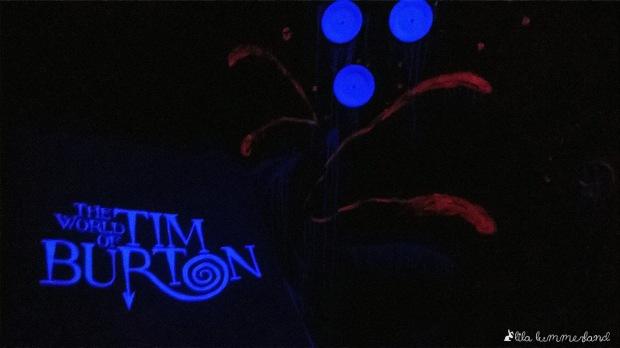 """In der """"Dunkelkammer"""" wird auch Schwarzlicht eingesetzt. Deshalb leuchtet dort die weiße Beschriftung des Ausstellungs-Guides so extrem."""