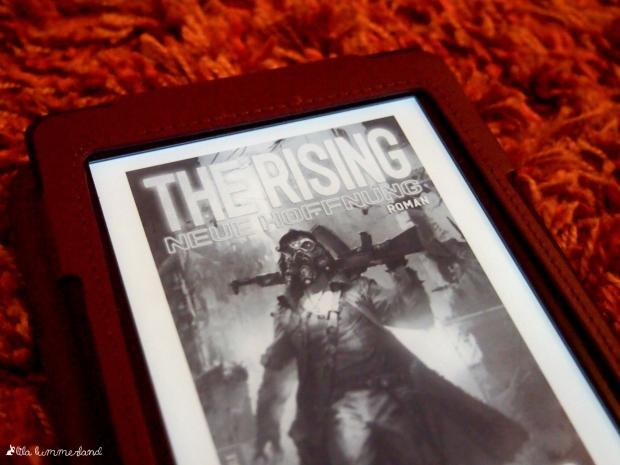 freitagsrezi-the-rising-felix-a-muenter
