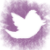 twitter_button_mai2014